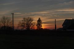 absichtlich (wolf238) Tags: sonnenuntergang sun sunset sonne silhouette abendstimmung abendrot abend abendsonne sky himmel