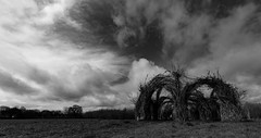 Cloudy Sky (Pittypomm) Tags: 2019p52 week14 aprillyweather cloud cloudy bw monochrome willow cathedral longrun meadow taunton somerset sky skyline countryside blackandwhite bnw outside mono day nature art clouds landscape