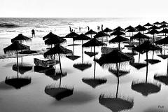 Reflexos na praia!! (puri_) Tags: praia areia mar água marécheia chapéus reflexos pb silhuetas
