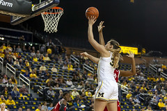 JD Scott Photography-mgoblog-IG-Michigan Women's Basketball-University of Indiana-Crisler Center-Ann Arbor-2019-5 (MGoBlog) Tags: annarbor basketball crislercenter february hoosiers jdscott jdscottphotography michigan photography sports sportsphotography universityofindiana universityofmichigan valentinesday wolverines womensbasketball mgoblog wwwjdscottphotographycommgoblogcom 2019 indiana michiganwomensbasketball wwwmgoblogcom
