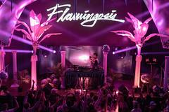 SF_Show67 (Hafstadphoto) Tags: yung bae aritus night tempo san francisco flamingosis life show future funk