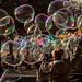 Viva le bolle!