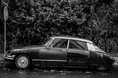 (el zopilote) Tags: 500 portland oregon cityscape street architecture wheels cars citroën citroënds stop signs lumix gf1 milc m43 lumixgvario1442mmf3556asphmegaois panasonic1442mmf3556 bw bn nb blancoynegro blackwhite noiretblanc digitalbw bndigital schwarzweiss monochrome