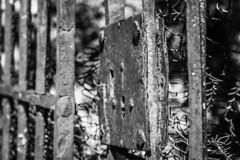 Old fence (Jose Rahona) Tags: fencefriday fences fenced bw monochrome fencedfriday vallas vallado blackandwhite blancoynegro