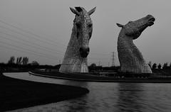 Kelpies Falkirk (rwbthatisme) Tags: kelpies falkirk scotland horse head steel sculpture