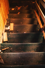 Old Dirty Staircases (dejankrsmanovic) Tags: dirty abandoned staircase old architecture building dark grunge empty structure background interior stairs step light ancient vintage construction broken nobody stair house entrance stairway steps aged inside messy creepy shadow floor ruin rusty abstract weathered damaged down deserted rust up spooky destruction retro underground rough abandon corridor scary hall obsolete