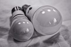 lightbulbs reflecting lightbulbs ... (Redheadwondering) Tags: sonyα7ii canon40mmf28cheapadapter canon 119picturesin2019 stilllife blackwhite bw 67lightbulbs 67 lightbulbs reflections