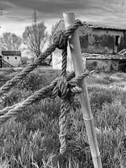 iph8103 (gzammarchi) Tags: italia paesaggio natura pianura campagna ravenna borgomontone corda fune nodo casa bn