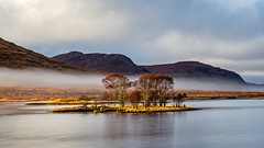 Islands in the Sun (Stoates-Findhorn) Tags: 2018 trees highland scotland winter mist beinnliathbheag droma fog hills westerross loch garve unitedkingdom gb island
