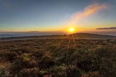 Winter Warmer... (CamraMan.) Tags: wildcamping christianburycrags bewcastlefells sunset sonya7 fotodiox canon1740mmlusm benro fells heather winter ©davidliddle ©camraman