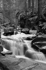 WINTER RIVER BLACK AND WHITE (sciatore73!) Tags: river winter black and white water creeck brook leitz elmarit summicron fuji monochrome landscape paesaggio fiume montagna neve