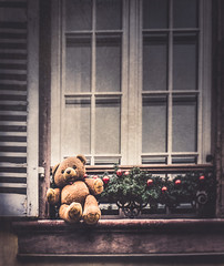 Christmas Teddy Bear (Ro Cafe) Tags: christmas teddy teddybear window old vintage shabby decoration lovely nikkor2470f28 sonya7iii textured
