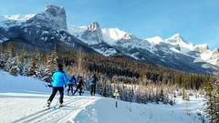 Blue or Black? (altamons) Tags: altamons xcountry winterland winter snow ski rockies canadian canadianrockies kcountry kananaskiscountry kananaskis canada alberta canmore rundle mountain wood tree sky mountainside forest landscape canmorenordiccentre mountrundle