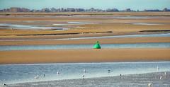 Baie de Somme (Duevel) Tags: baiedesomme baai frankrijk coast kust lowtide buoy boei maréebasse lecrotoy france sommebaai nordpasdecalais àlautomne