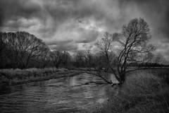 Is there any border (micagoto) Tags: river neisse grenze border polen tornersdorf rothenburg oberlausitz sachsen