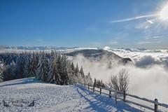 Savoie, Auvergne-Rhône-Alpes ( photopade (Nikonist)) Tags: savoie revard montagne nuages neige auvergnerhônealpes nikon nikond7100 affinityphoto afsdxvrzoomnikkor1685mmf3556ged apple imac