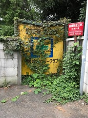 """A sign  """"Hunting prohibited area"""" (takitategohan) Tags: ivy sign japanese abandoned green"""