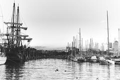 Jolly Roger (Carlos Oteo) Tags: barcelona blancoynegro monocromo bw bnw blackandwhite cataluña spain sony a58