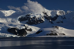 IMG_6866 (y.awanohara) Tags: cuvervilleisland cuverville antarctica antarcticpeninsula icebergs glaciers blue january2019