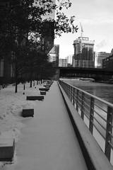 JJN_0136 (James J. Novotny) Tags: bench snow path d750 nikon chicago downtown unlimitedphotos bw blackandwhite