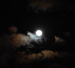untitled-0135.jpg (JIM Mourgos) Tags: chinatown moonshots nikond750 sanfrancisco berkeley february morgiepix newpix 2019 northbeach