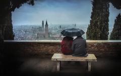 Parole nel vento.. (Raul-64) Tags: verona veneto italia pioggia ombrello alberi paesaggio olimpus