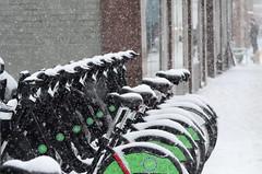 Not Today (Paul B0udreau) Tags: nikkor70300mm canada ontario paulboudreauphotography niagara d5100 nikon nikond5100 snowstorm toronto city street winter sooc bicycle bikeshare