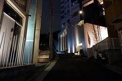 (Human-Faced Bun & Honey Pudding) Tags: night shot slope hill door bulding pillar tree telegraph pole light