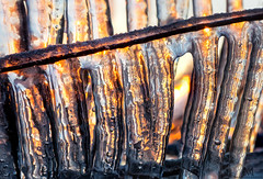 fire on ice (marianna armata) Tags: ice icicles sunset macro mariannaarmata winter cold frozen water solid