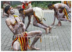 Reconciliation Day dance (~ veronicajwilliams photography ~) Tags: veronicajwilliamsphotography veronicajwilliams copyrighted aborigine australian australianaborigine reconciliation dance ceremony southaustralia canonaustralia canon450d culture australianculture tradition