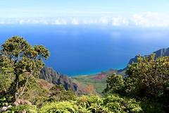 Kaua'i (joeksuey) Tags: kauai napalicoast kaleparidgetrail kalalaulookout viewpoint hawaii kalalau valley kokee statepark