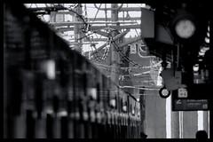 "Tokyo Metropolitan Area: Impressions of a great city (Matthias Harbers) Tags: canonpowershotg3x canon g3x"" photoshop elements topaz tokyo metropolitan living home bike bw black white monochrome city street life impression blackandwhite photo border japan spring"