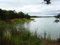 Lake Murray, Oklahoma (MarkusR.) Tags: dsc00206 mrieder markusrieder vacation urlaub fotoreise phototrip usa 2018 usa2018 oklahoma lake see landscape landschaft lakemurray lakemurraystatepark ardmore