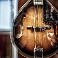 Mandolin (kamakirii) Tags: mandolin music musical instruments lensbaby sweet 35 canon5dmkiv