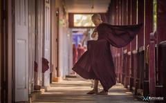 [Birmanie] Décembre 2018 - Janvier 2019-9 (#vmivelaz) Tags: birmanie myanmar vmivelaz vincent mivelaz wwwvincentmivelazcom asia asie canon