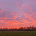 20190120_Sunrise over Knowle Park