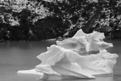 Iceberg (CURZU@) Tags: parquenacionaltorresdelpaine torresdelpaine lagogrey patagonia magallanes natales chile naturaleza natural nature iceberg ice montañas monocromo bw blackandwhite blancoynegro reservadelabiosfera biosfera parque