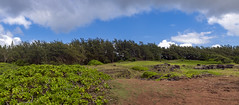 Roche Qui Pleure viewpoint, Mauritius / Смотровая площадка Ля-Рош-ки-Плер (Плачущая Скала) /explore/2019/04/13/ (dmilokt) Tags: природа nature пейзаж landscape песок sand цвет color colour пляж beach море океан sea ocean dmilokt