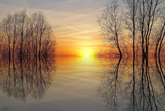 Art of Reflections.... (Piet photography) Tags: reflections artwork sunset winter zonsondergang silhouetten telitegalleryaoi bestcapturesaoi