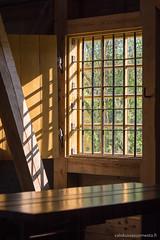 Kalteri ikkunassa (www.valokuviasuomesta.fi) Tags: b52vajakesäteatterinvarastokultavarasto helsinki suomenlinnaviapori susisaari arvorakennus aurinkoinenauringonpaiste bargrating barredwindow building ikkuna kalteri kalteriikkuna kesäsuvi puinenpuurakenteinen rakennus summer sunnysunfilled windowcasement wooden