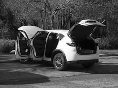Saturday Car Cleaning Ritual (zeevveez) Tags: זאבברקן zeevveez zeevbarkan canon car bw