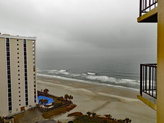 View From Room 1212. (dccradio) Tags: myrtlebeach sc southcarolina horrycounty hilton hotel lodging motel resort hiltonresort outdoor outdoors outside february monday mondayafternoon goodafternoon afternoon travel workingvacation water waves ocean atlantic atlanticocean beach shore tree trees palm palmtrees city building architecture resorts hotels tallbuildings skyscraper grass lawn greenery sand bodyofwater nikon coolpix l340 bridgecamera