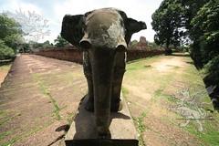 Angkor_Mebon Orientale_2014_02