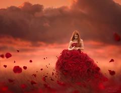 Pieces of Me ({jessica drossin}) Tags: jessicadrossin rose petals flower sky woman dress red orange float wwwjessicadrossincom bestportraitsaoi elitegallerya