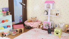 The Fallen Star Finds Hope #1 (Arthoniel) Tags: feign reign shire pets animals cat dog liccachan latidoll suji ns normalskin basic faceup haru tan owl ooak roombox gakman creations artdoll dollhouse collection tiny miniature rement bid balljointeddoll latiyellow house figure vet