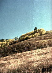 71-944 (ndpa / s. lundeen, archivist) Tags: nick dewolf nickdewolf color photographbynickdewolf 1975 1970s film 35mm 71 reel71 summer fall aspen colorado september landscape mountain mountains rockymountains rockies aspenmountain onaspenmountain atopaspenmountain skimountain skitrail skirun partial endroll endofroll endoftheroll sky bluesky trees leaves colors changingcolors