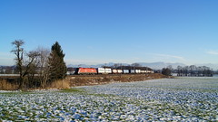 1116/ÖBB - Rann (lukasrothmann) Tags: bayern heimat oberbayern berge alpen kampenwand hochries train zug lok lokomotive klv taurus öbb 1116 rca schnee sonne rann