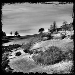 """""""Ciel et terre"""" (Corinne DEFER - DoubleCo) Tags: laclapoure ascros paysage lanscape paca alpesmaritimes montagne 06 altitude nuages brume corinnedefer"""