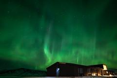 Northern Lights over Lilja Guesthouse, Höfn (jasty78) Tags: northernlights auroraborealis aurora night stars snow liljaguesthouse hofn iceland nikond810 samyang14mmf28 14mm