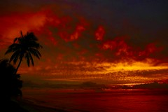 Where every evening is a feast for our eyes and our soul… (fxdx) Tags: sunset sky clouds feast soul sea ocean mauritius fz1000